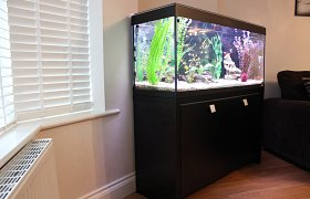Aquarium installation